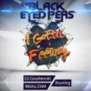Black Eyed Peas - I Gotta Feeling (DJ Grushevski & Misha Zam Remix Radio Edit)