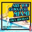Phunk Investigation, Paul Bing - Are You Gonna Go Miami  (Phunk Investigation Remix)