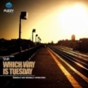 SNR - Which Way Is Tuesday  (Gary McDonald Remix)