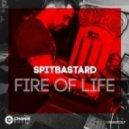 Spitbastard - Fake Moog (Original mix)