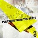 Alex Gray & Silvio Carrano - Pleasure From The Beats (Silvio Carrano Bigroom Radio Cut)