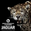 Johnny Dangerously, Ian Hawke - Jaguar (Original Mix)