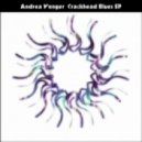 Andrea Wenger - Level 5 Laser Lotus (Original Mix)