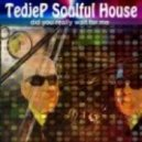 Tedjep Soulful House - Did You Really Wait for Me