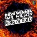 Dave Winnel, Mr Wilson - Fires Of Gold (Dirty Rush & Gregor Es Remix)