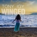Tony Igy - Winged (Chillstep Version)