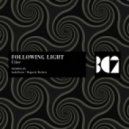 Following Light - Raison D'etre (Magnetic Brothers Remix)