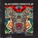 Blackbird Blackbird - Feel It In My Bones (Original mix)