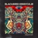 Blackbird Blackbird - There Is Nowhere (Original mix)
