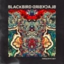 Blackbird Blackbird - Grow Old With Me (Don't Let Go)