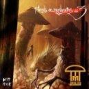 Infected Mushroom & Savant - Rise Up (Original mix)