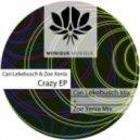 Cari Lekebusch, Zoe Xenia - Crazy (Cari Lekebusch Mix)