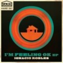 Ignacio Robles - Feeling Ok (Original)