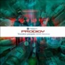 Prodigy - Voodoo people (SOM Remix)