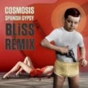Cosmosis - Spanish Gypsy (BLiSS Remix)