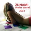ZUNAMI - Paradise of People (Original)