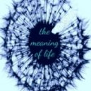 a.ST.i. - the meaning of life