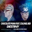 Chocolate Puma feat. Colonel Red - Destiny (Dj Illona & Dj Diaz Remix)