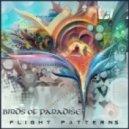 Birds of Paradise - Bird Song (Original mix)