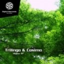 Trilingo & Cosimo - Higher (Original mix)