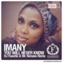 Imany - You Will Never Know (DJ Favorite & Mr. Romano Official Remix)