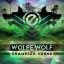 Wolf-e-Wolf - 24k (Original mix)