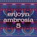 Enjoyn - Ambrosia #5 ()