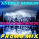DJ Andrey Gorkin - December Promo Mix 2014