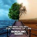 Reuben Halsey - Meaning Of Life (Bobalino Remix)