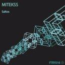 Mitekss - Saltos