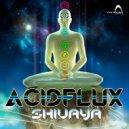 Acidflux - Shiva Nritya (Original Mix)