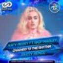 Katy Perry ft. Skip Marley - Chained To The Rhythm (Buzzy Radio Edit)