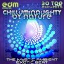Entity Plus - Transmissions (Original Mix)