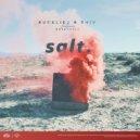 RudeLies & Shiv & Rosendale - Salt (feat. Rosendale) (Original Mix)