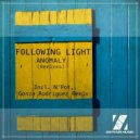 Following Light - Anomaly (N\'pot Remix)