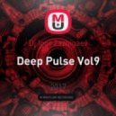 Dj Igor Zazhigaev - Deep Pulse Vol9