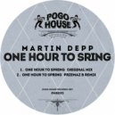Martin Depp - One Hour To Spring (Przemaz B Remix)