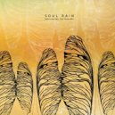 Pablo Cahn - Soul Rain (Paco Osuna Remix)