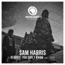 Sam Harris feat. Lucia - You Don't Know