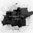 Avicii, Sandro Cavazza - Without You