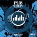 Tygris - Secrets  (Original Mix)