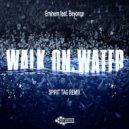 Eminem feat. Beyonce - Walk On Water (Spirit Tag Remix)
