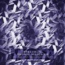 Spectrum - Beyond The Grid (Original mix)